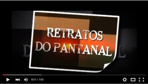 retratos-pantanal-youtube