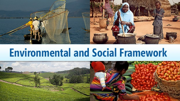Environmental-and-Social-Framework
