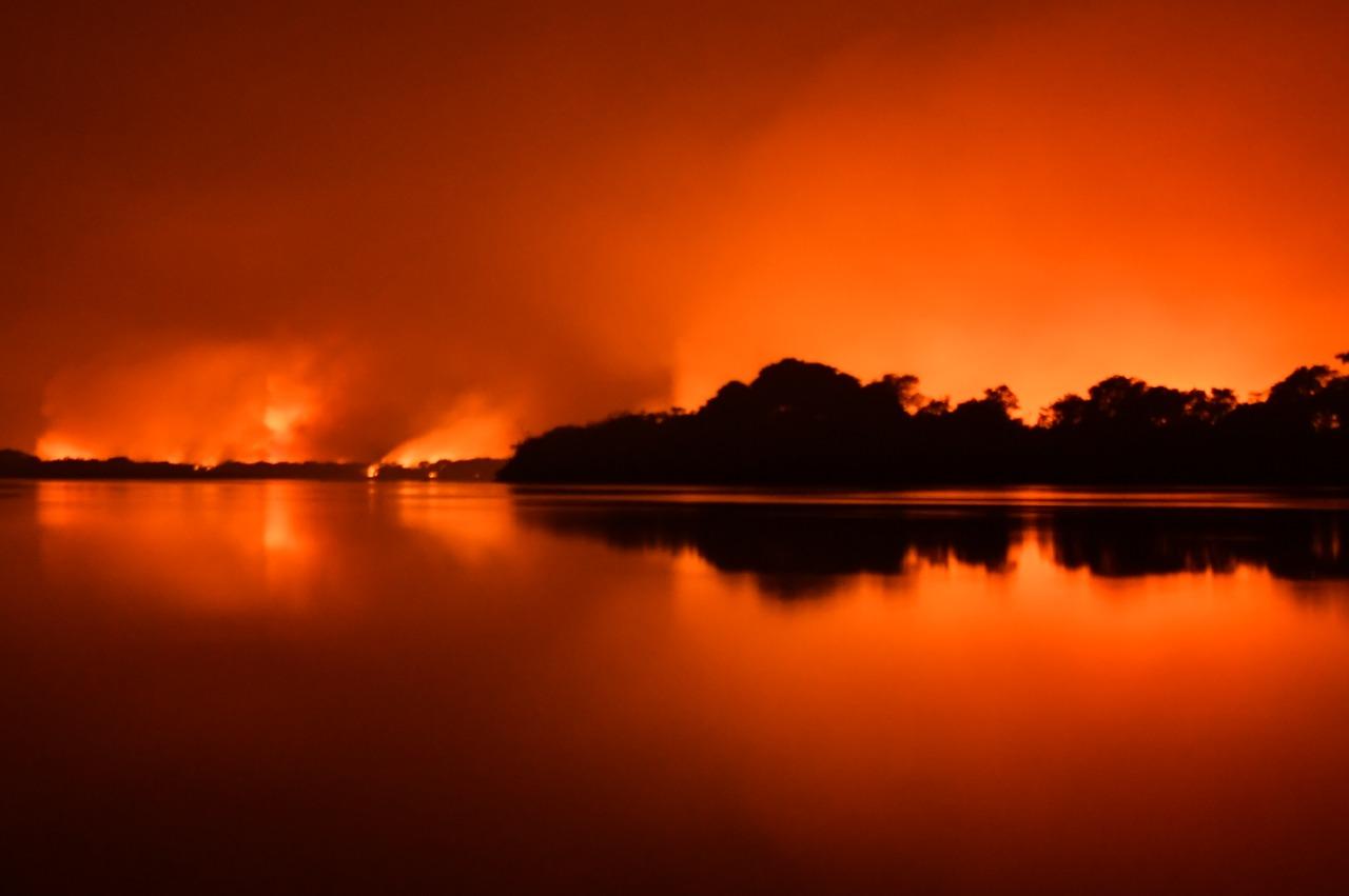 As 6 causas principais da tragédia dos incêndios no Pantanal - Ecoa